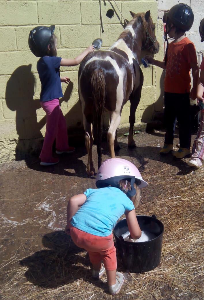 niños de campamento cuidando un pony