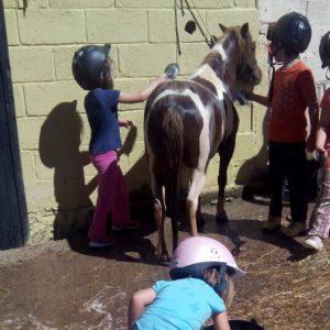 niños de campamento jugando con un pony