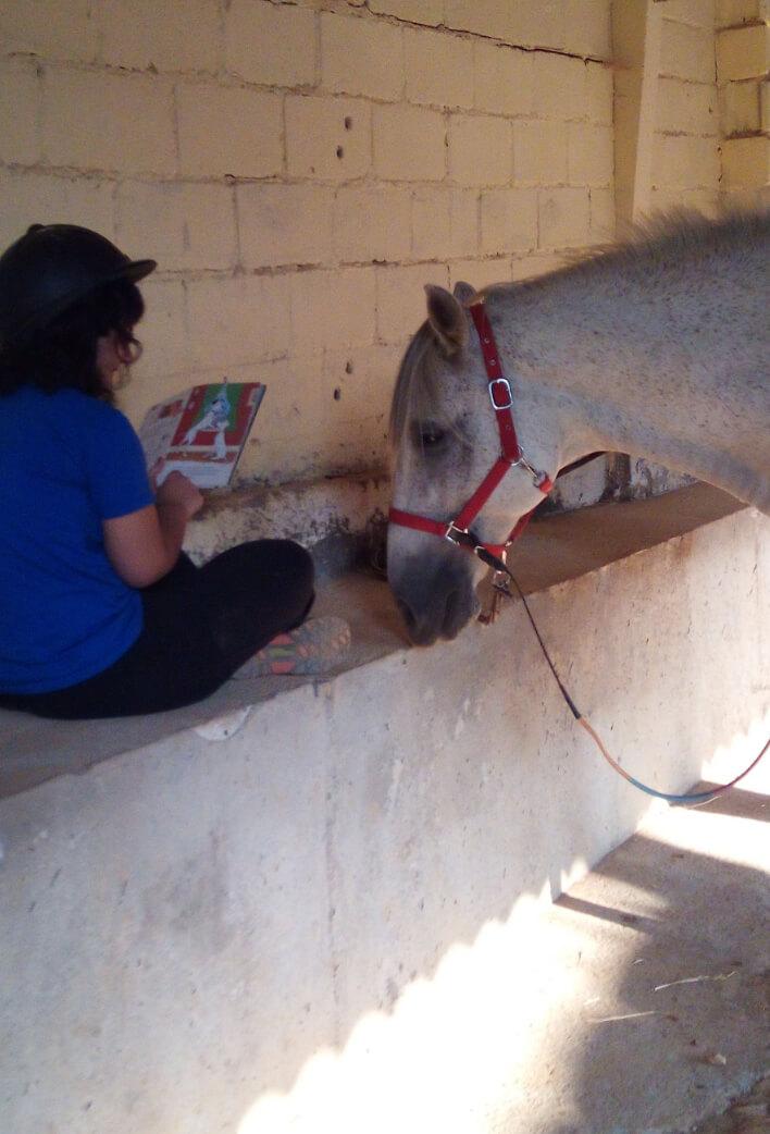 caballo y niño en establo