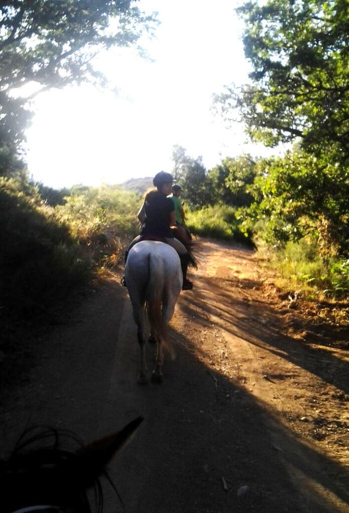 Ruta caballo en montaña leonesa
